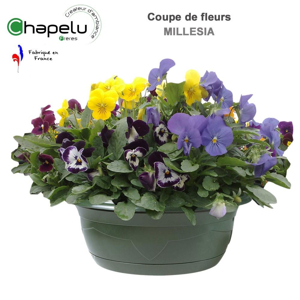 pot de fleur coupe mell sia 32 cm r serve d 39 eau 0393240061 chapelu. Black Bedroom Furniture Sets. Home Design Ideas