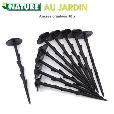 Ancres crantées H 20 cm - 10 pces