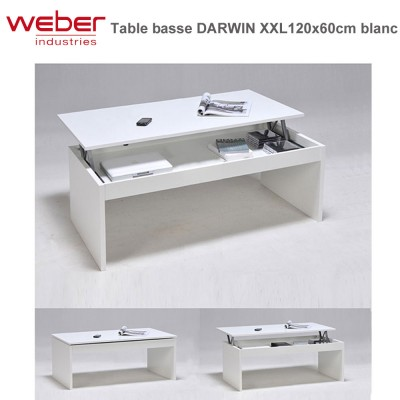 Table basse Darwin XL 120 x 60 cm blanche