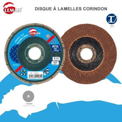 Disque à lamelles corindon- Métal - bois -10 pièces