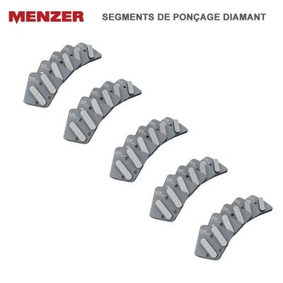 Segments de ponçage diamant tendre pour ESM 406 - 5 pces