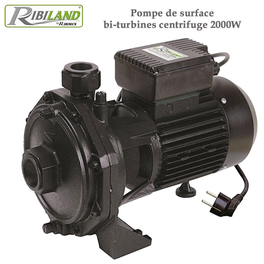 pompe de surface bi turbines centrifuge 2000w. Black Bedroom Furniture Sets. Home Design Ideas