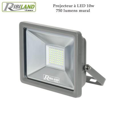 Projecteur à LED 10w 750 lumens mural