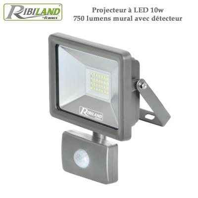 Projecteur à LED 10w 750 lumens mural avec détecteur