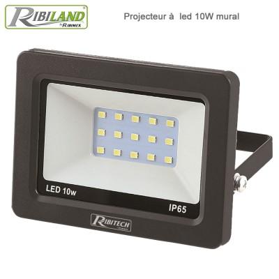 Projecteur LED 10 W 750 lumens - Mural