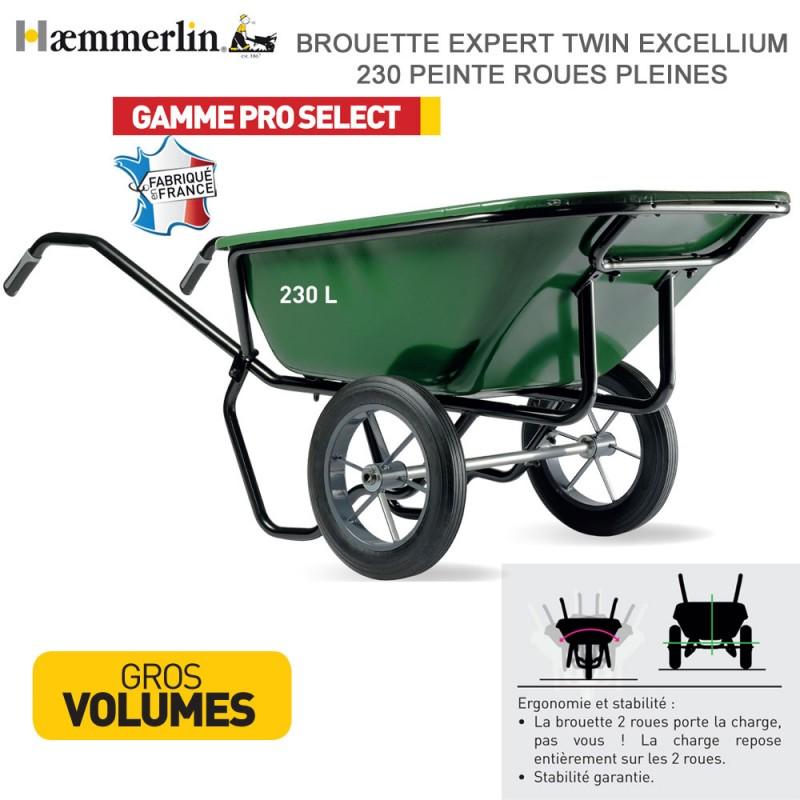 Brouette Expert Twin Excellium 230 Verte - Roues pleines