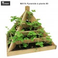 Carré potager Maya Pyramide à plants 80